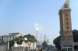 中国石化镇海炼化分公司100万吨/乙烯工程项目